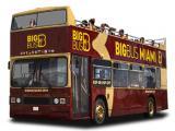 Miami All Loops Bus Tour