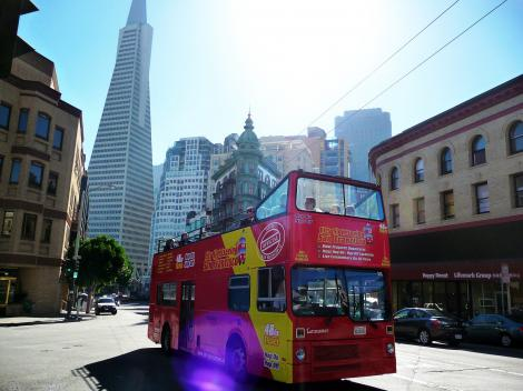 All Loops Double Decker Bus Tour (48-Hour Ticket)