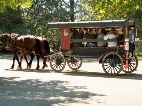 Day Tour to Philadelphia & Amish Country