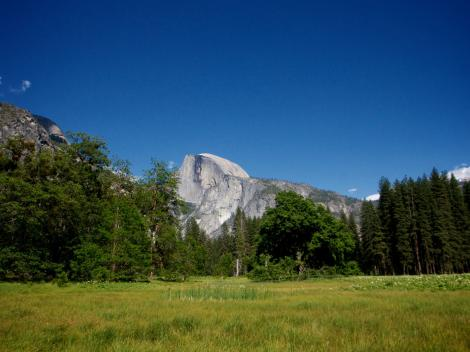 Yosemite National Park in a Day