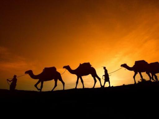 Desert Safari and Sunset Barbecue
