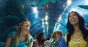 SeaWorld California