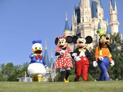 Planejamento Disney