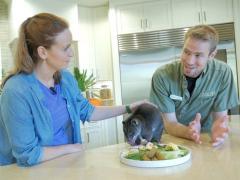 Animal Care Center at Busch Gardens