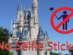 Pau de selfie banido na Disney