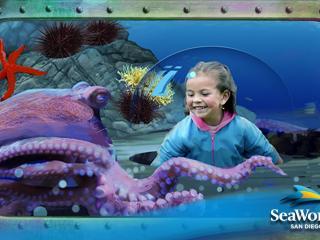 Ocean Explorer SeaWorld California