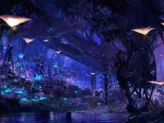 Pandora – O mundo de AVATAR - no Animal Kingdom