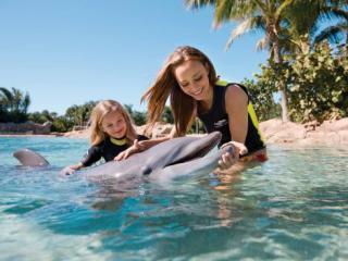 Discovery Cove® Ultimate com Nado