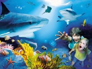 Sea Life Aquarium - I-Drive 360