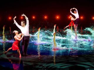 Le Rêve Cirque du Soleil
