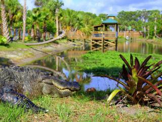 GRÁTIS Ingresso para Wild Florida Park