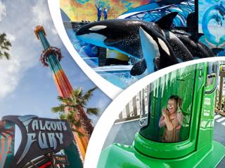 Estacionamento GRATUITO no SeaWorld, Aquatica, Busch Gardens & Adventure Island