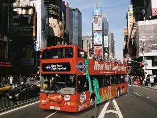 City Tour de ônibus Gray Line
