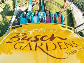 Ticket oficial do busch gardens tampa bay parques e ingressos for Best day go busch gardens tampa