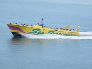 1 dia em Clearwater Beach & Passeio de Speedboat