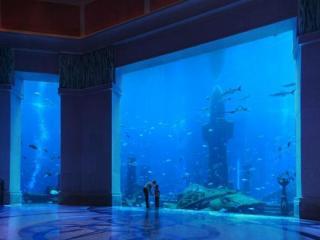 Aquário Lost Chambers em Dubai