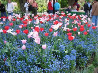 Tour de bicicleta para os Jardins de Monet