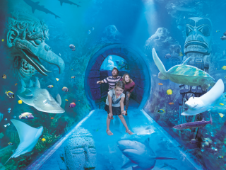 SEA LIFE Orlando Admission Ticket