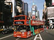 Gray Line City Tour de ônibus