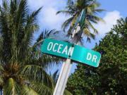 Tour 1 dia para Miami e Everglades